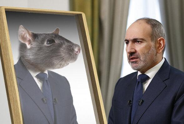 Пашинян обслуживает интересы азербайджанцев, которые хозяйничают на территории Армении