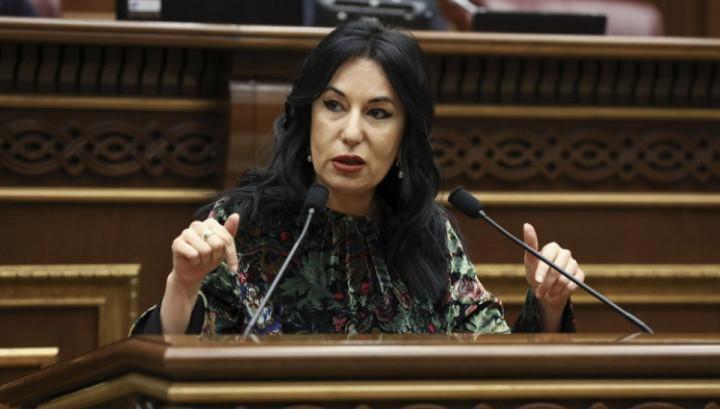 «Мы не имеем права во второй раз проиграть турку» / Наира Зограбян