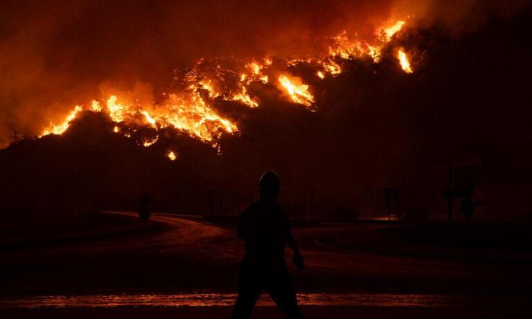 35 миллиардов долларов – такой ущерб понесет Турция из-за лесных пожаров